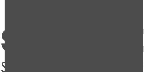 strive-logo-no-bg